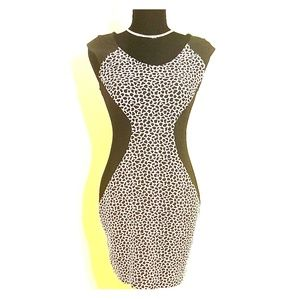 Sultry Express Leopard Dress